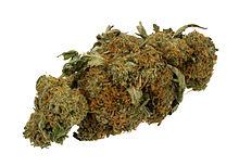 220px-Marijuana-Cannabis-Weed-Bud-Gram